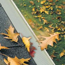 Leaf Guard Protection